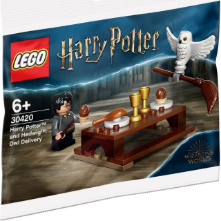 LEGO® 30420 HARRY POTTER AND HEDWIG
